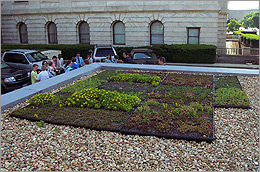 Photo of USDA's rooftop garden.